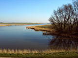 Zeeland Countryside (08), More Silence by corngrowth, Photography->Landscape gallery