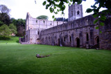 Fountains Abbey Green by dleuty, Photography->Castles/Ruins gallery