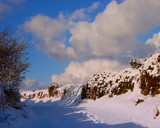 WALKING IN THE SNOW by LANJOCKEY, Photography->Landscape gallery