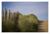 to the beach by JQ, Photography->Shorelines gallery