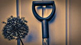 Gardening by SEFA, photography->still life gallery