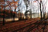 Morning at Alum Creek by casechaser, Photography->Landscape gallery