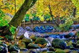 Ashland Autumn by gr8fulted, photography->landscape gallery