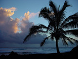 Dominick by manodshark, Photography->Shorelines gallery