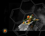 Treefrog by caedes, Photography->Manipulation gallery