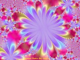 Passion Flower by Asrai, Abstract->Fractal gallery