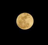 Image: Quick Shot of the Super Moon