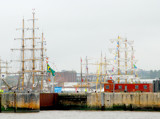Tall Masts on Tall Ships by braces, Photography->Boats gallery