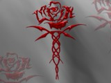 Celtic Rose by Crusader, Illustrations->Digital gallery