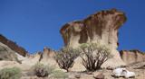 Reserva ambiental san blas tenerife by Paul_Gerritsen, photography->landscape gallery