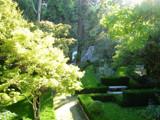 Botanical Garden 6 by Nuno_Cruz, Photography->Landscape gallery