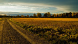Late autumn light by SEFA, photography->landscape gallery