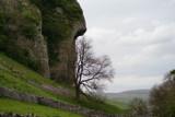 kilnsey crag by Dale_G_12, photography->landscape gallery