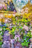 Cottage Industry by Tootles, photography->manipulation gallery