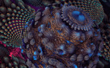 Beneath The Waves by casechaser, abstract->fractal gallery