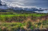Farmland by DigiCamMan, photography->landscape gallery
