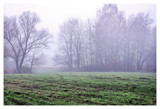 November impressions IV by ekowalska, photography->landscape gallery