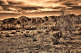 Sonoran Desert ...Sepia Gold Toned. by snapshooter87, photography->landscape gallery