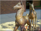 Hillaway Ponies by kidder, Photography->Sculpture gallery