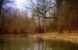 A Little Dab'l Do Ya by Jimbobedsel, Photography->Landscape gallery