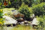 My Stream by koca, photography->landscape gallery