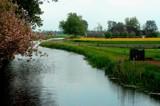 Stream by rozem061, Photography->Landscape gallery