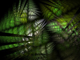 You Can't See The Wood For The Trees by Hottrockin, Abstract->Fractal gallery