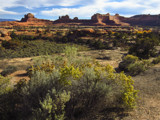 Canyonlands National Park - Utah 01 by nmsmith, photography->landscape gallery