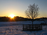 Winter in the Park by Mannie3, photography->sunset/rise gallery