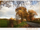 a country lane... by fogz, Photography->Landscape gallery