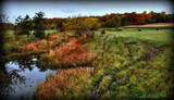 Autumn In The Midwest #2 by tigger3, photography->landscape gallery