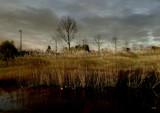 Dark Day by rvdb, photography->landscape gallery