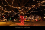 Have Yourself A Merry Little Christmas by Nikoneer, holidays->christmas gallery