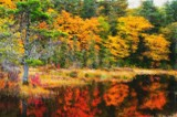 """Impression of a Colourful Fall "" by icedancer, photography->manipulation gallery"