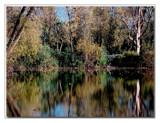 Mirror Image 2 by gerryp, photography->shorelines gallery