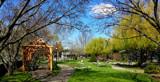The Biblical Garden by tigger3, photography->gardens gallery