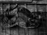 Trash Art 0063 by rvdb, photography->manipulation gallery