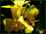 Easter Greetings by LynEve, photography->flowers gallery
