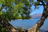 Lake Wakatipu - Through the Willows by LynEve, photography->water gallery