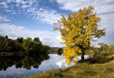 Early Fall Reflections by phasmid, Photography->Landscape gallery