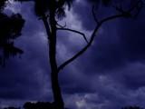 Modern Myth by Green_Eyed_Goddess, Photography->Landscape gallery