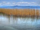Lake Habitat by koca, photography->shorelines gallery