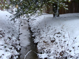 Snowy Creek by lilkittees, Photography->Landscape gallery