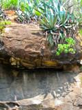 Kolli Hills rock by jpk40, Photography->Landscape gallery