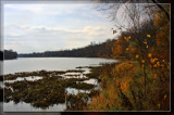 Along the Maumee by Jimbobedsel, Photography->Shorelines gallery