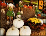 Fall Farmstand by trixxie17, holidays gallery