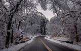 lothrop road by solita17, Photography->Landscape gallery