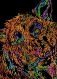 Electric Tiger! by galaxygirl1, abstract gallery