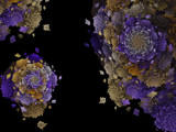 Flowering Spirals by Joanie, abstract->fractal gallery