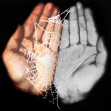 What wicked webs we weave by DomRee, Photography->Manipulation gallery